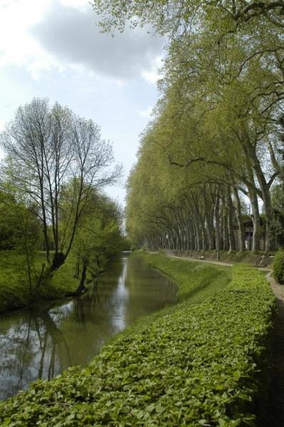 Canal Thoissey © photo P. Branche, 2011, Collections photographiques de la Ville de Villefranche-sur-Saône