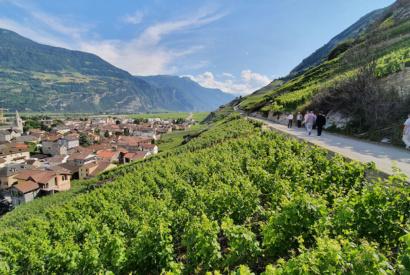 Canton de Valais a Vetroz © Andre Deyrieux