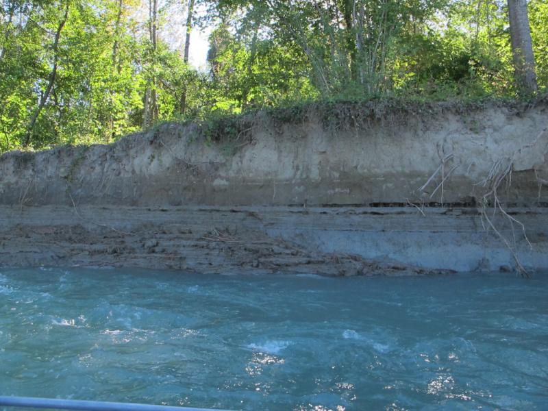 Erosion bord de Rhone en Chautagne © Jean Michel Olivier