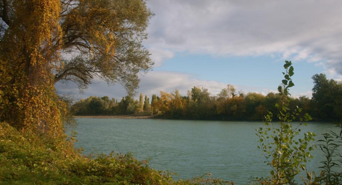 Rive ardéchoise du fleuve Rhône © Beegoo/Auvergne-Rhône-Alpes Tourisme