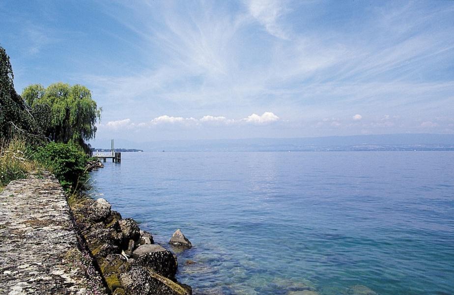 Rive du lac Leman - Evian (74) © OT Evian
