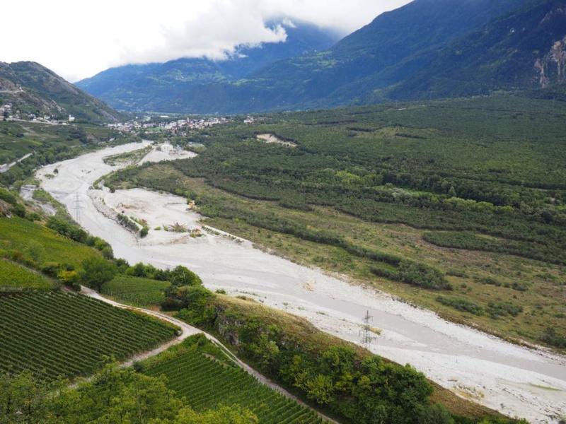 Vignes en bord de Rhône dans le Valais © Capsurlerhône